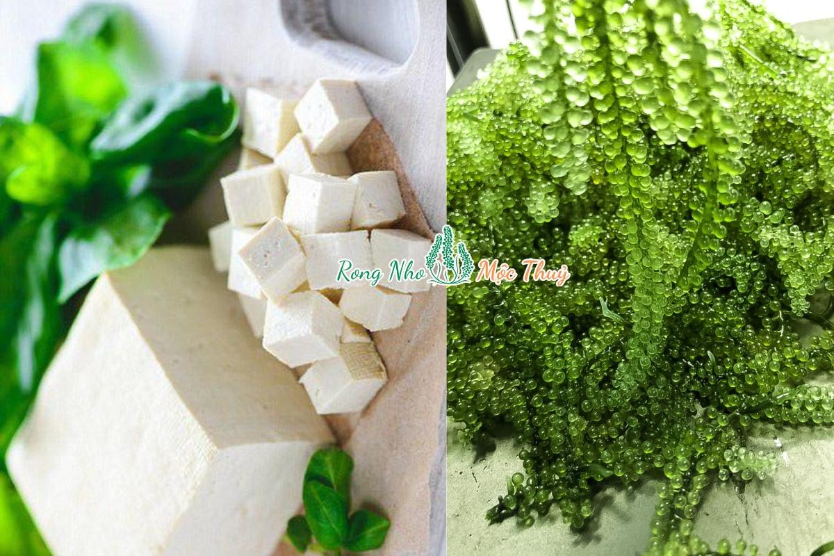 Canh rong nho đậu phù rất phù hợp cho các bạn ăn chay, ăn kiêng. Rất ngon nhé !!!
